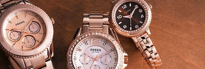fossil-header-banners2